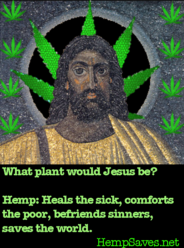 What plant would jesus be