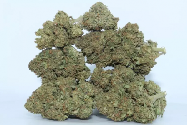 Remedy from Dr. Ganja