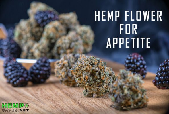 Hemp Flower For appetite