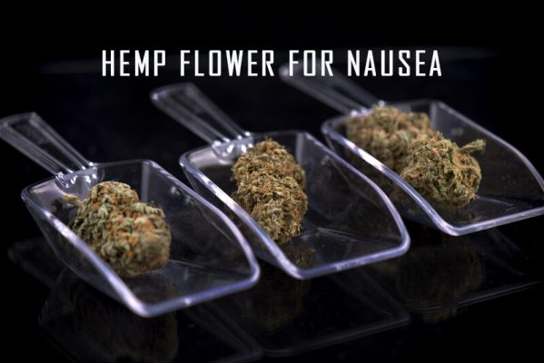 hemp flower for nausea