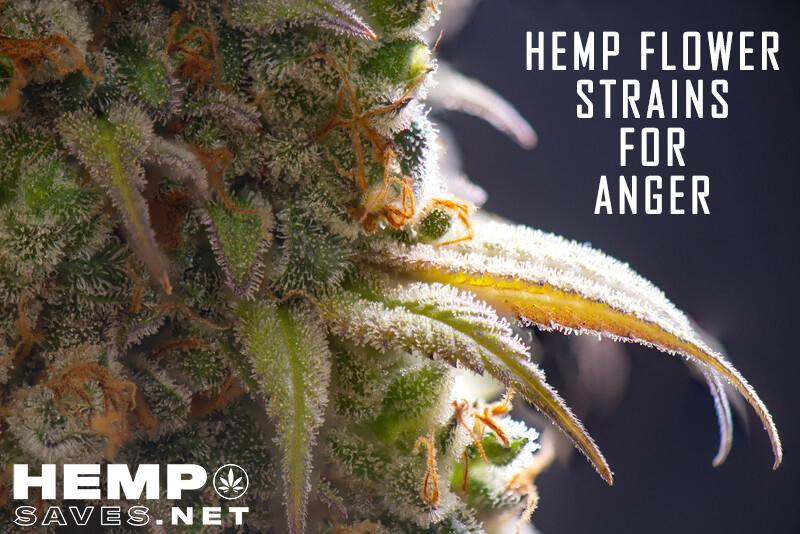 Hemp Flower Strains For Anger