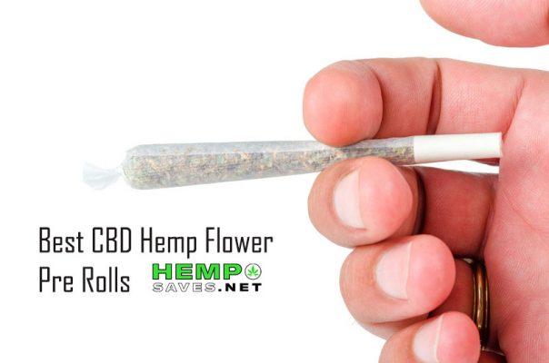 Best CBD Flower Pre Rolls
