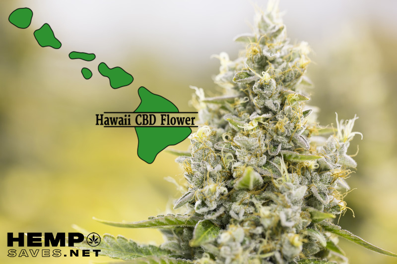 CBD Flower Hawaii