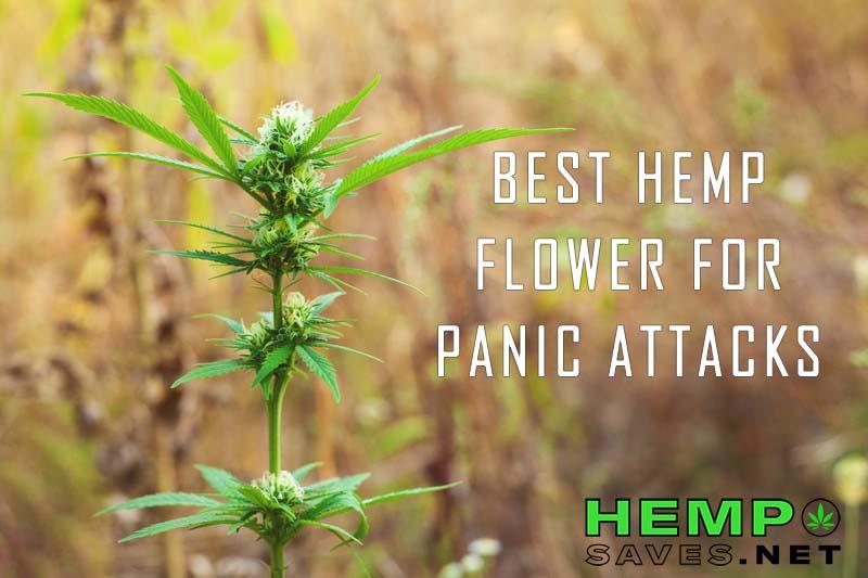 Hemp Flower For Panic Attacks