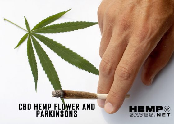 Hemp Flower For Parkinson's