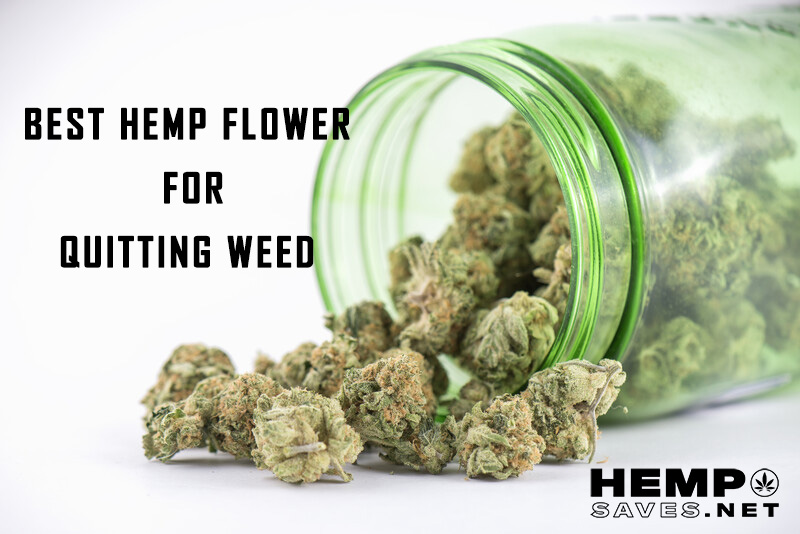 best hemp flower for quitting weed