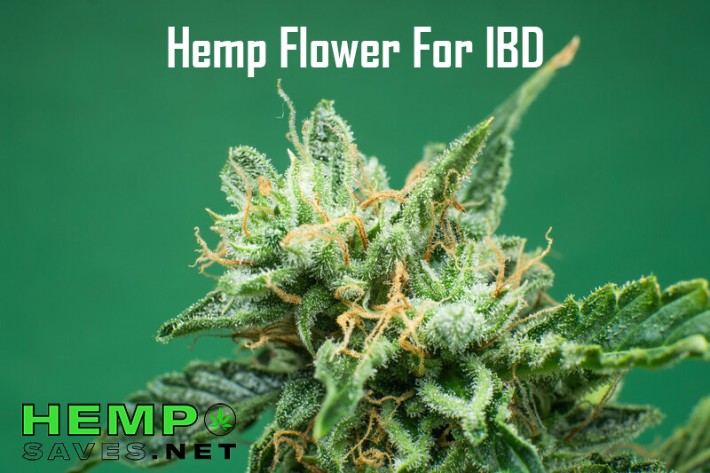 hemp flower for IBD