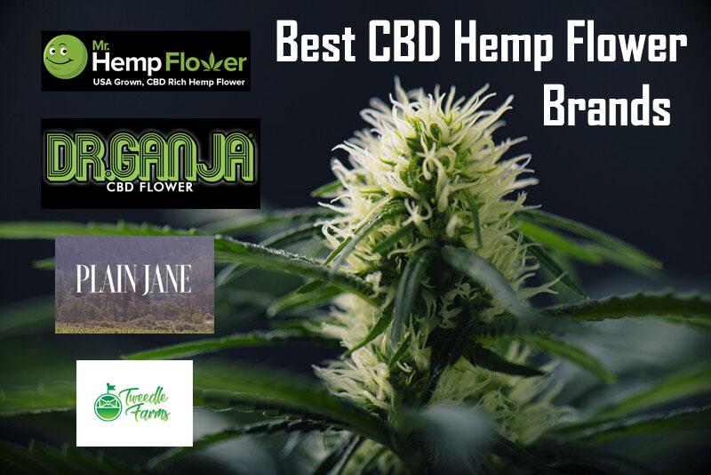 Best CBD Hemp Flower Brands