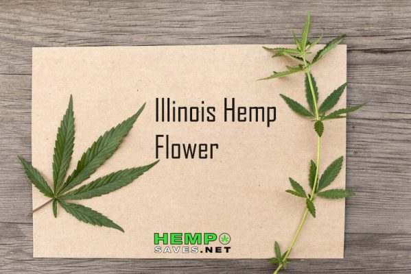 Hemp Flower Illinois