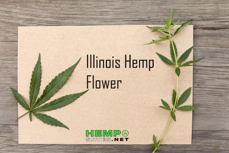 Hemp Flower Illinois